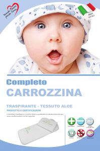 Materassino Carrozzina con Cuscino Universale Aloe  related image