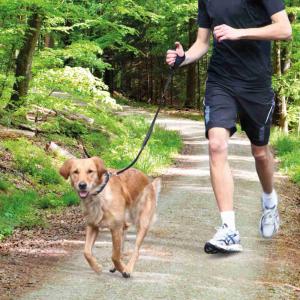 Trixie - Guinzaglio per jogging