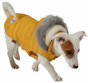 Piumino con cappuccio URBAN  giallo per cani Zolux