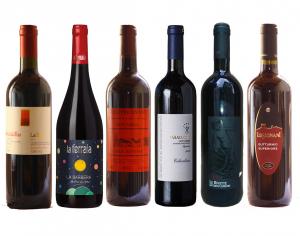 6 vini rossi fermi