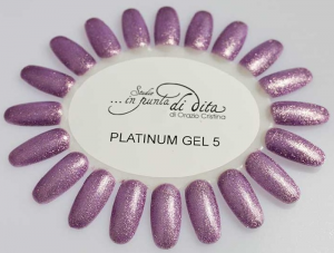 Gel color Platinum in vasetto nr. 05