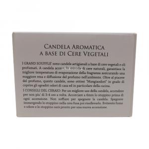 CANDELA MASSAGGIO ARNICA 100 ML LUMEN