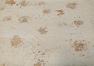 Credenza con 2 ante intagliate white wash