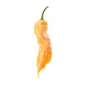 Bengal Naga Peach disidratato