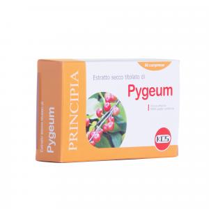 Pygeum estratto secco