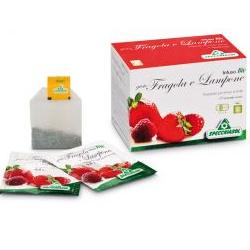 INFUSO FRAGOLA LAMPONE