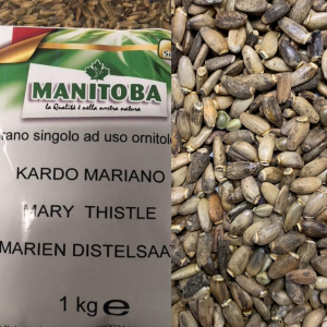 CARDO MARIANO 1kg