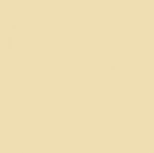 Spalla larga con scollo in tulle puntinato in micromodal, cod. SL13100