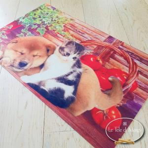 Tappetino in gomma Cane e gatto