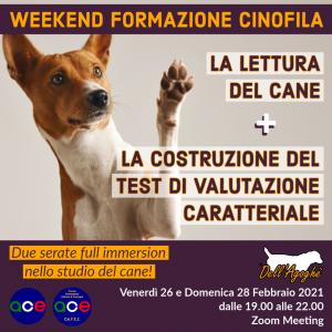 Webinar: Doppio appuntamento, la lettura del cane + la costruzione del test di valutazione caratteriale