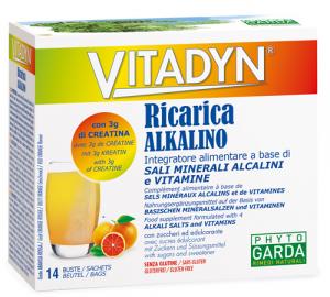 VITADYN RICARICA ALKALIN14BUST