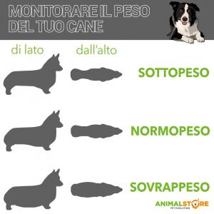 Hill's - Science Plan Canine - Medium Adult - Light al Pollo 14 kg