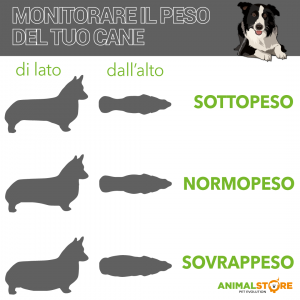 Hill's - Prescription Diet Canine - Metabolic - 12 kg