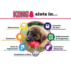 Kong - Classic - XL