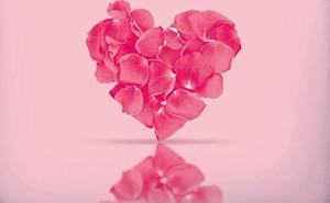 COMPLETO COPRIPIUMINO BASSETTI LOVE IS A PASSION