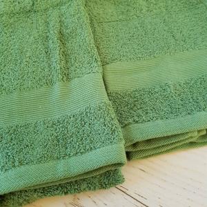 Coppia asciugamani verde balza rigata