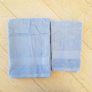 Coppia asciugamani azzurro balza rigata