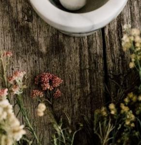 Candela naturale di soia Rosa selvatica