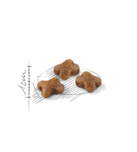 Royal Canin - Feline Health Nutrition - Kitten - 10 kg