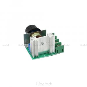 Regolatore Di Tensione AC 220V 2000W SCR Dimmer Termostato Velocità Intesità