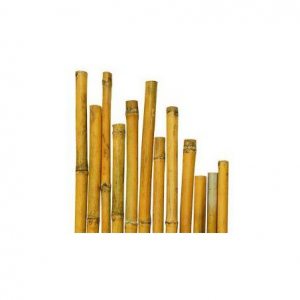 CANNE BAMBOO MULTIUSO DIAMETRO 22 MM.