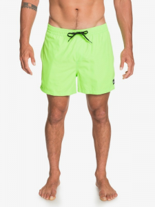 Costume QuikSilver Everyday Volley ( More Colors )