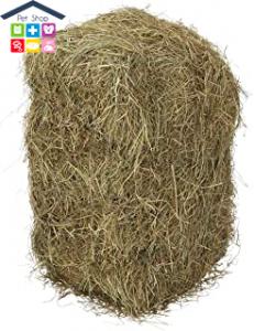Lolo pets | Fieno da Pascolo - 1,200 Kg