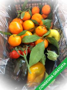 Cassetta Mix Frutta e Verdura circa 5,5 Kg