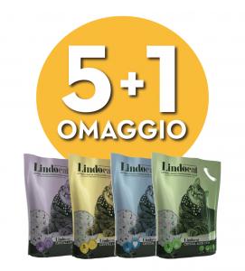 Lindocat Crystal - Silicio - 5 litri - 5 pezzi + 1 omaggio