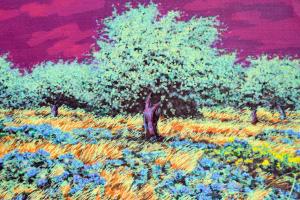 Azzinari Franco Paesaggio Serigrafia Formato cm 80x60