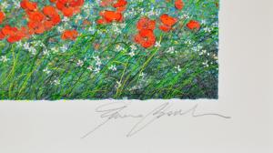 Bocchi Franco Serigrafia Formato cm 25x35