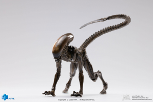 *PREORDER* Alien 3 Exquisite: DOG ALIEN (LOOK UP) by Hiya Toys