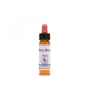 WILD ROSE STOCK NATUR