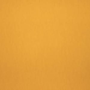 JERSEY DI COTONE  BIO / GOTS - GIALLO