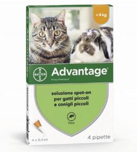 Bayer - Advantage per Gatti - 2 confezioni