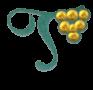 Janus Vermentino di Gallura Docg Superiore 2019 cl.75 - Tamponi