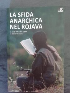 La sfida anarchica nel Rojava