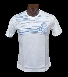T-shirt, Maglietta uomo a manica corta girocollo Filo di Scozia FERRUCCI - ERICE