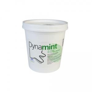 DYNAMINT 1kg -  crema risolvente lenitiva