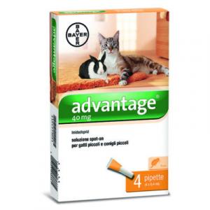 ADVANTAGE 40 (4 pipette) – Antiparassitario per gatti e conigli piccoli