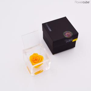 Flowercube rose stabilizzate colore gialla