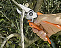FORBICE CESOIA DA POTA LOWE 8.107 A BATTENTE TAGLIO 24mm