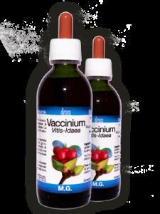 VACCINIUM VITIS IDAEA 50ML MG