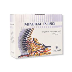 MINERAL P 450 12 STICK 10ML