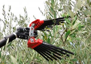 Lisam V8 turbo abbacchiatore pettine scuotitore pneumatico per raccolta olive