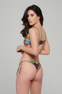 LILY   BRASILIANA