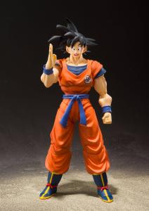 *PREORDER* Dragon Ball Z - S.H. Figuarts: SON GOKU (A Saiyan Raised On Earth) by Bandai Tamashii