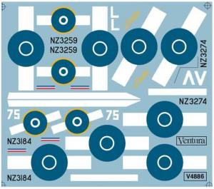 RNZAF CURTISS P-40 NS