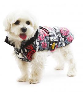 Fashion Dog - Piumino Impermeabile