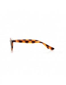 Tortoiseshell glasses online